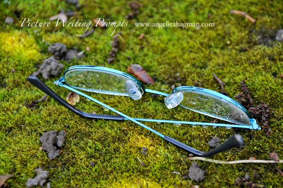 PictureWritingPrompt-glasses