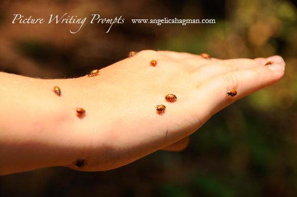 PictureWritingPrompt-ladybugs