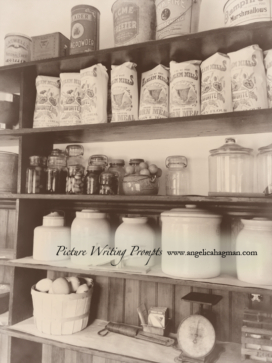 PictureWritingPrompt-shelves